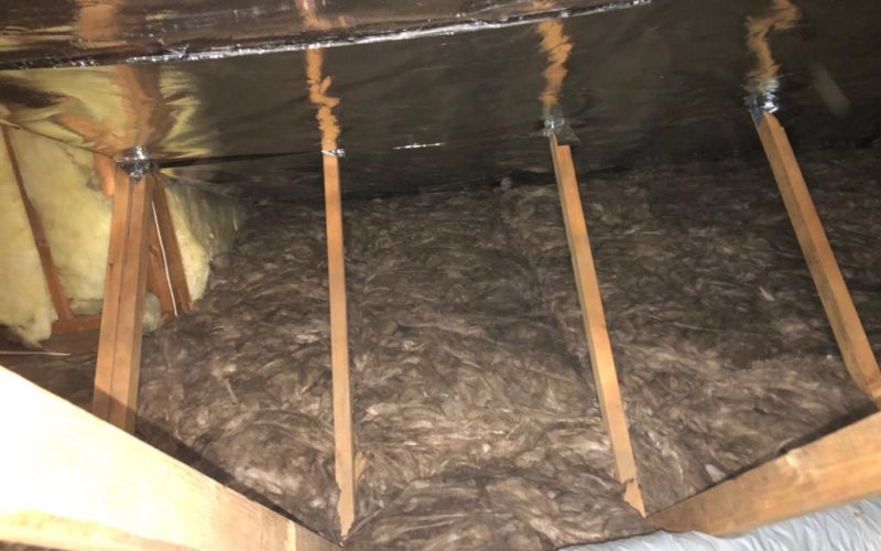 Eco Batts and Radiant Barrier